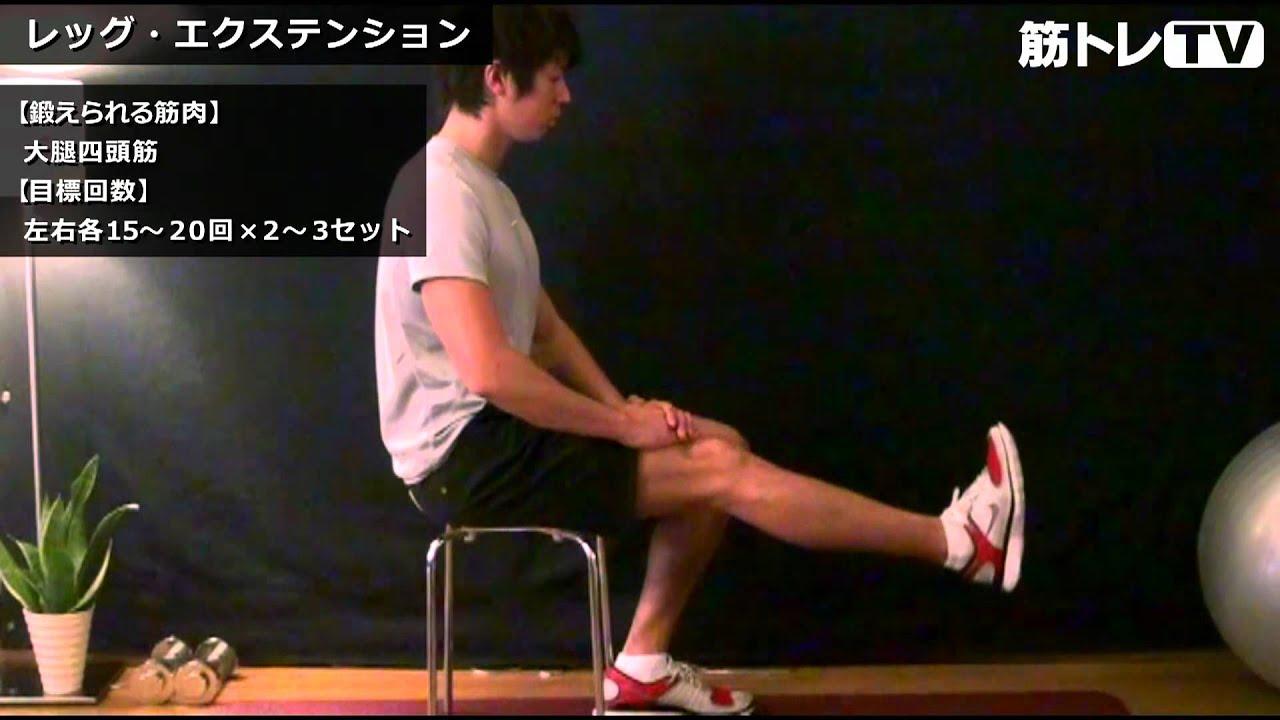 頭 大腿 トレーニング 四 筋