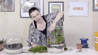 Zrób To Sama (DIY) odc. nr 3 Ogród w szkle - Szybkie Metamorfozy