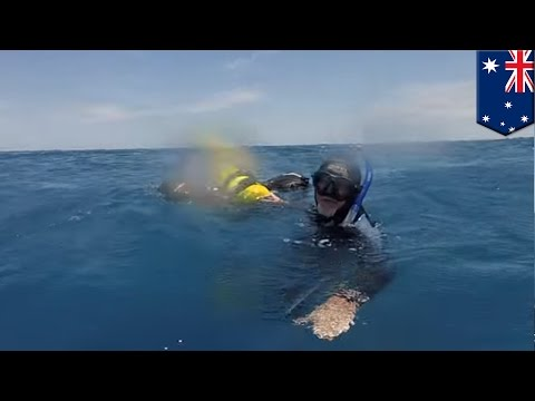 Stranded in shark-infested water, Australian scuba diver survives 18-hour ordeal - TomoNews