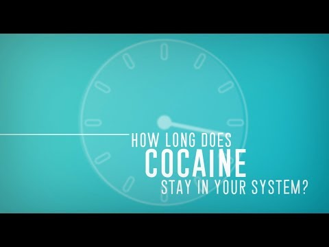 How Long Does Cocaine Stay in Your System?