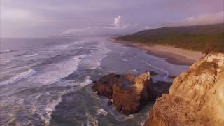 You Have My Surrender - Lauren Daigle ///With Lyrics/// Portugues
