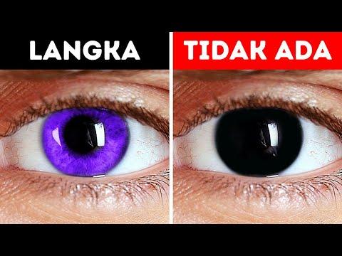 Tidak Ada Manusia yang Terlahir dengan Mata Hitam. Inilah Alasannya