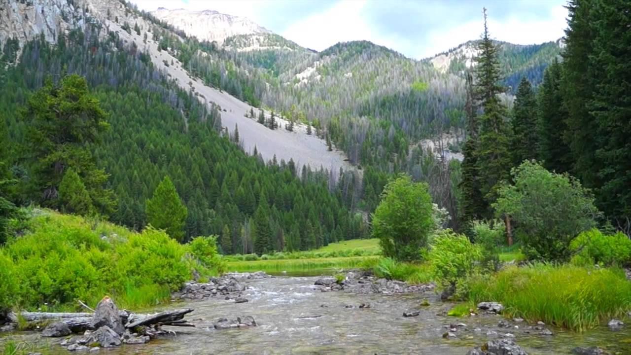Flat Creek Ranch, Jackson, Wyoming - YouTube