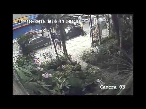 [Ecuador Earthquake 16 Apr 2016] Raw CCTV Footage from Local Florist [HD]