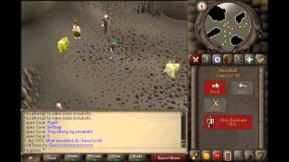 "Oldschool Runescape ""Christmas 2006"" Event Guide Black/Rainbow Party Hat"