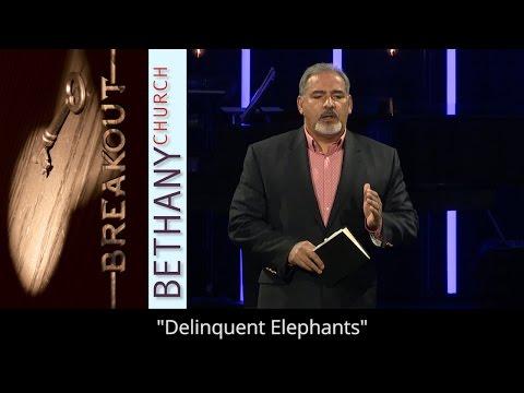 Delinquent Elephants