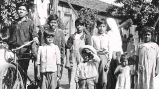 The Los Angeles Plague of 1924 Hi-Quality
