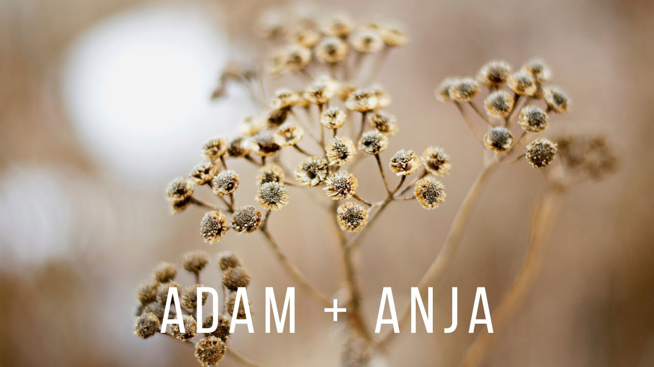 Adam and Anja | Rustic and Authentic Countryside Wedding | Cinematic Mode Wedding Film