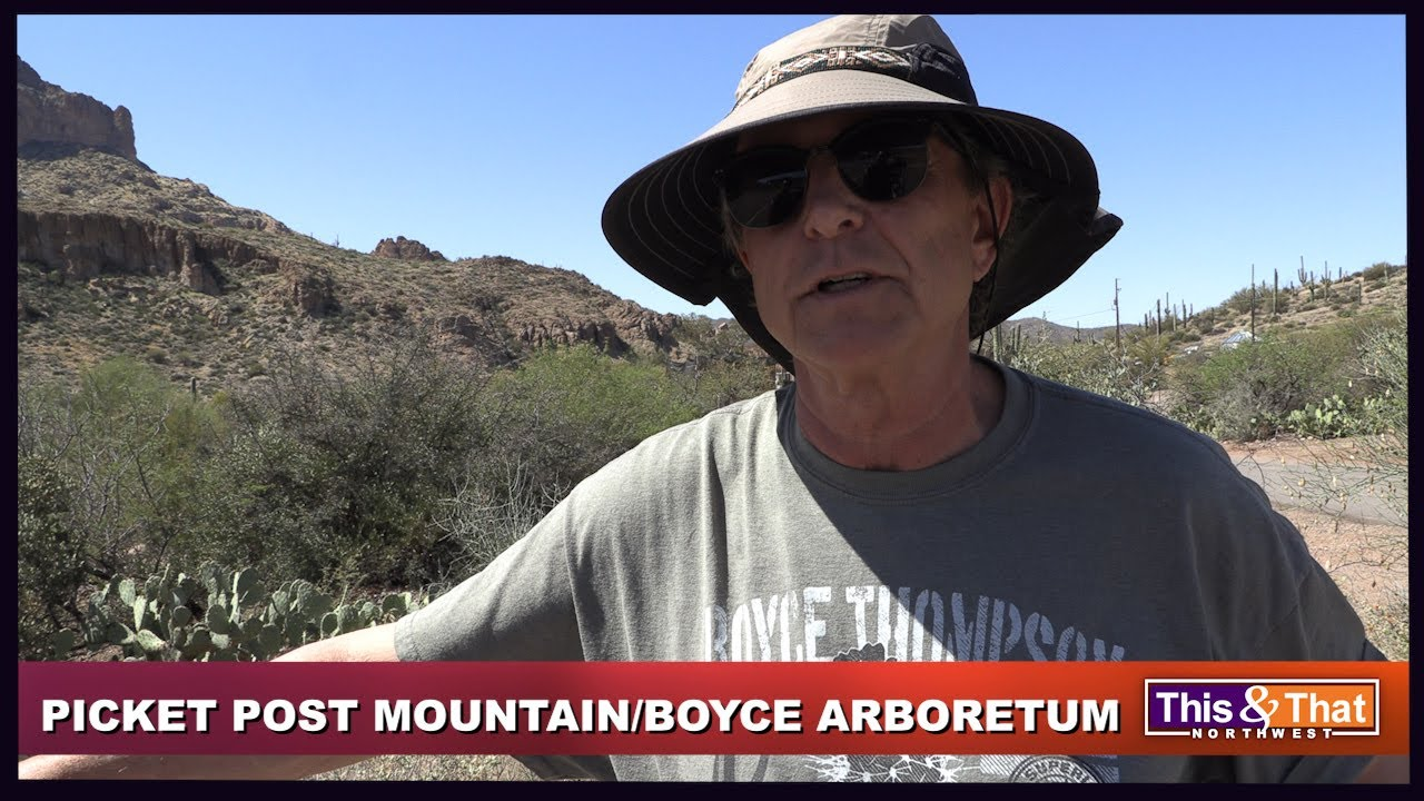 Arizona's Boyce Thompson Arboretum & Picket Post Mountain_Part 1