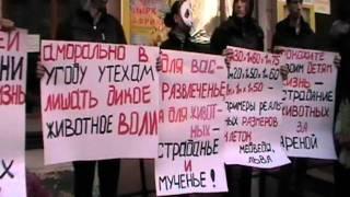 акция против использования животных в цирке, Одесса.