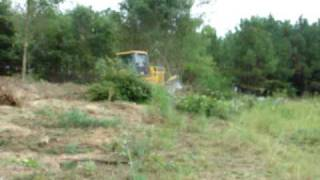 Clearing trees with the dozer