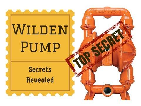 Understanding Wilden Pump