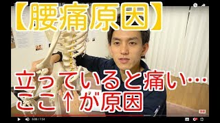 【腰痛原因】立っていると痛い…ここ↓が原因  -整体院 福佳- thumbnail