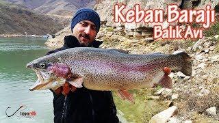 Keban Barajı Balık Avı | Dev Somon ve Sazan Avı (Malatya) Trout Fishing