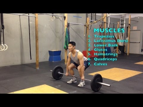 Increase your vertical jump : Lower Body Strength (Part 1/4)