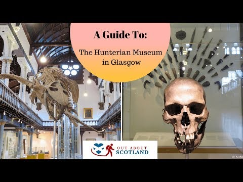 A Guide to Visiting The Hunterian Museum in Glasgow