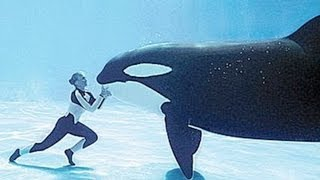 Expert Whale Trainers Attacked In BLACKFISH thumbnail