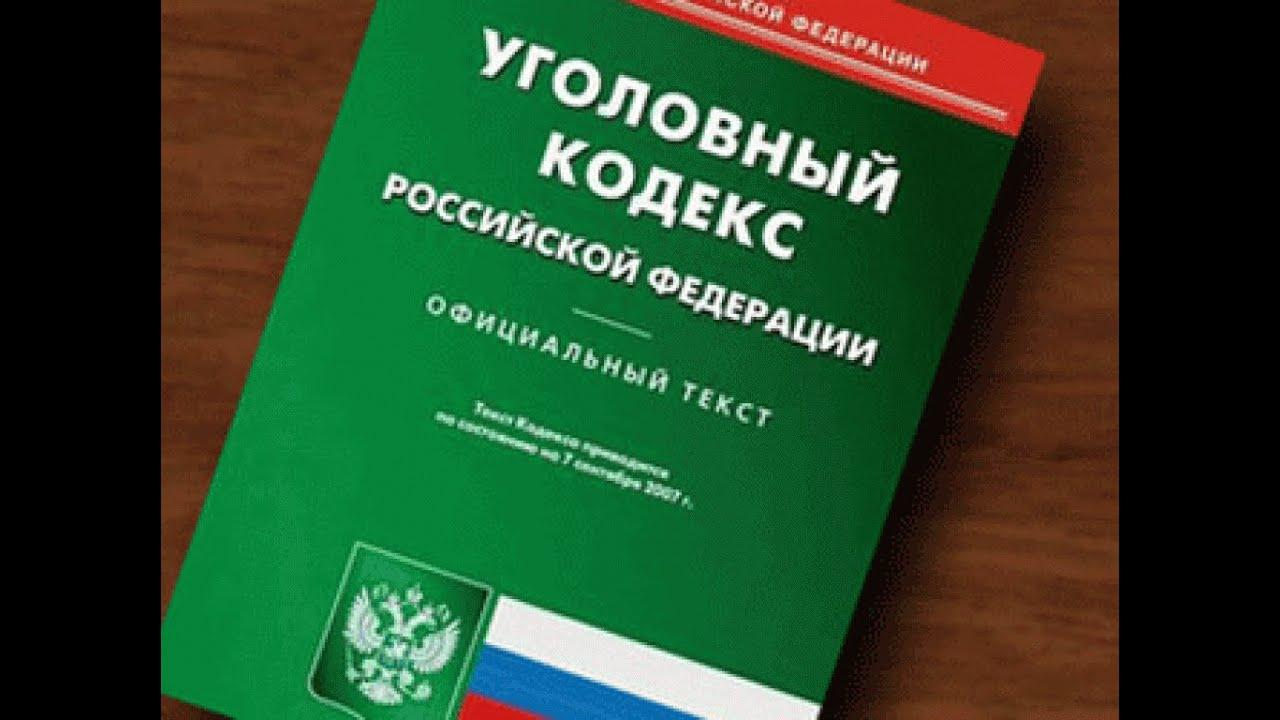 уголовный кодекс россии скачать - фото 9