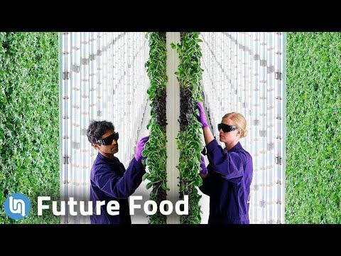 Future Food  - cover
