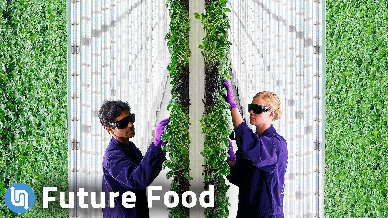 The Future of Food? The Growth of Vertical Farming