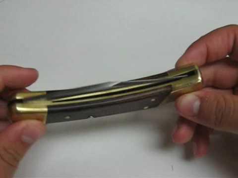 Buck 110 Hunter Folding Knife