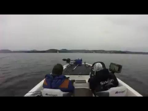 Steve Morgan Live Boat Camera   Derwent River, Tasmania