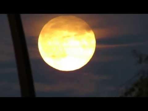 Red/orange/yellow moon of Calgary. August 29/15. Canon SX40HS