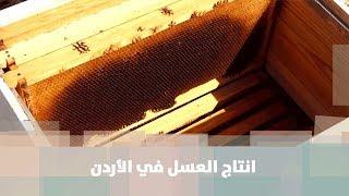 انتاج العسل في الأردن