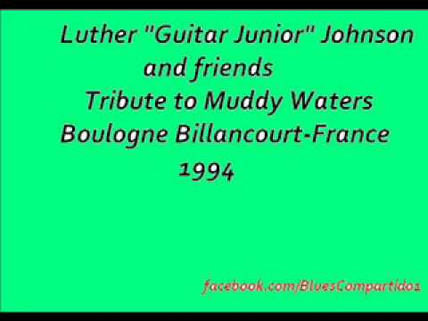 """Luther """"Guitar Junior"""" Johnson And Friends -Tribute to Muddy Waters, Boulogne-France. 1994"""