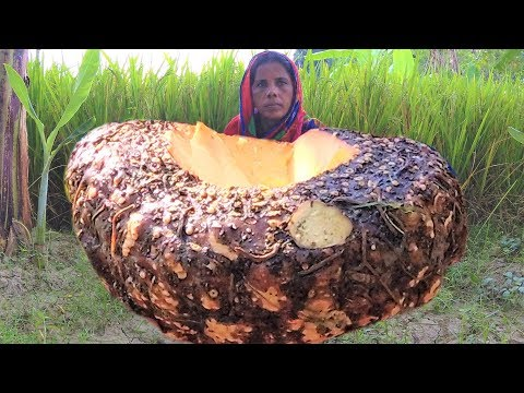 99% People Don't Know This Veg Name | Giant Taro/Arum  Root/Ol Kochu Egg & Parwal Curry Recipe
