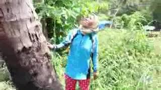 Gambar cover wanita panjat kelapa..hebat