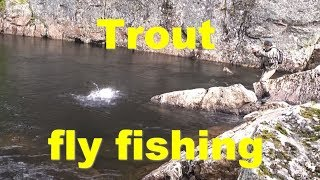 Trout flyfishing ,Kola Peninsula, the river Penka