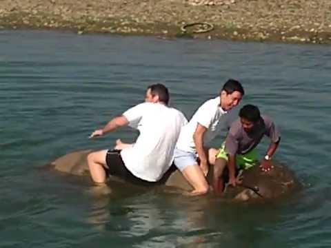 Washing Elephants in Nepal