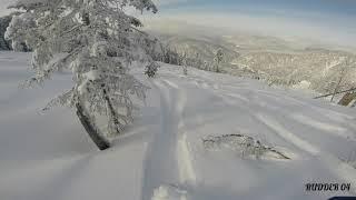 телецкий горнолыжный курорт фрирайд