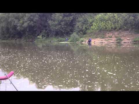подольск плотина рыбалка