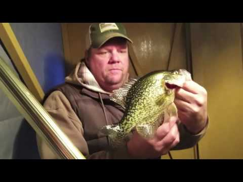 Private Pond Crappies in Minnesota
