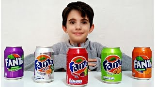 Learn Colors With Fanta for Children, Toddlers and Babies | Kids Learning Colours