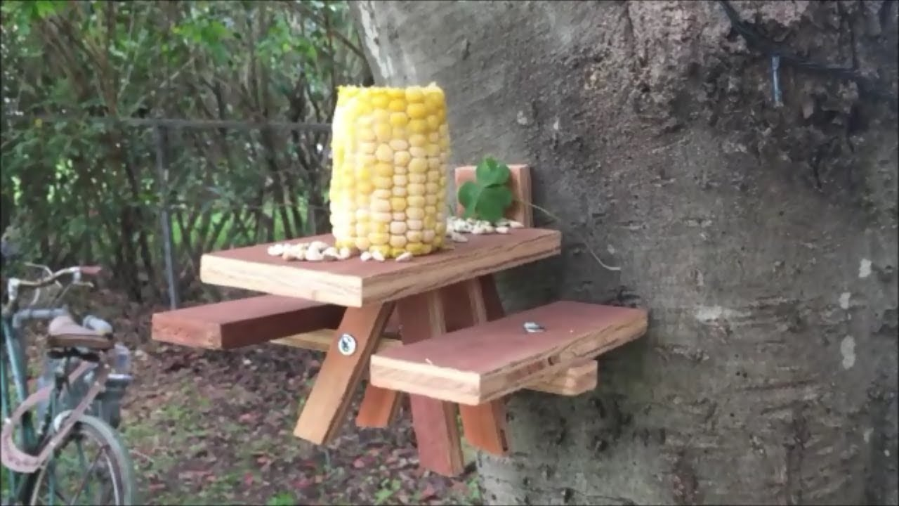 How To Make A Squirrel Picnic Table You