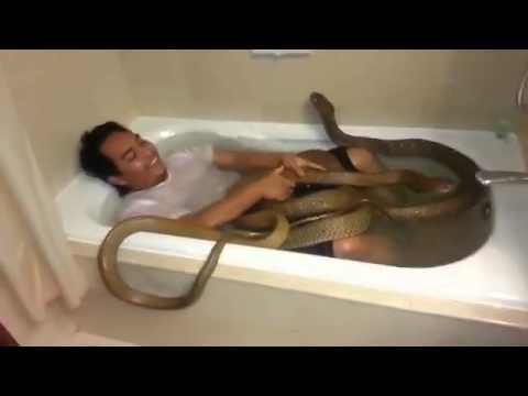 bath guys 500+ results found for bath body works bath body works mens cologne oak men.