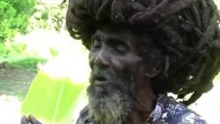 Ooze - weed song (Lyrics Video)