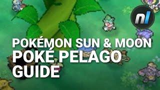 Guide: What is Poké Pelago? | Pokémon Sun & Moon Poké Pelago Guide