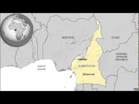 Dual Languages, Legal Systems Make Seeking Justice Difficult in Cameroon