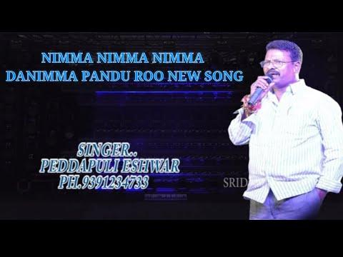 NIMMA NIMMA NIMMA DANIMMA PANDU ROO NEW SONG@SINGER PEDDAPULI ESHWAR