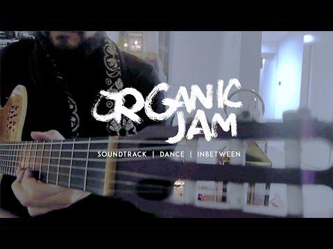 Carlo & the Organic Jam Clip 4  Sternberg Clarke - Live at Diwali Festival