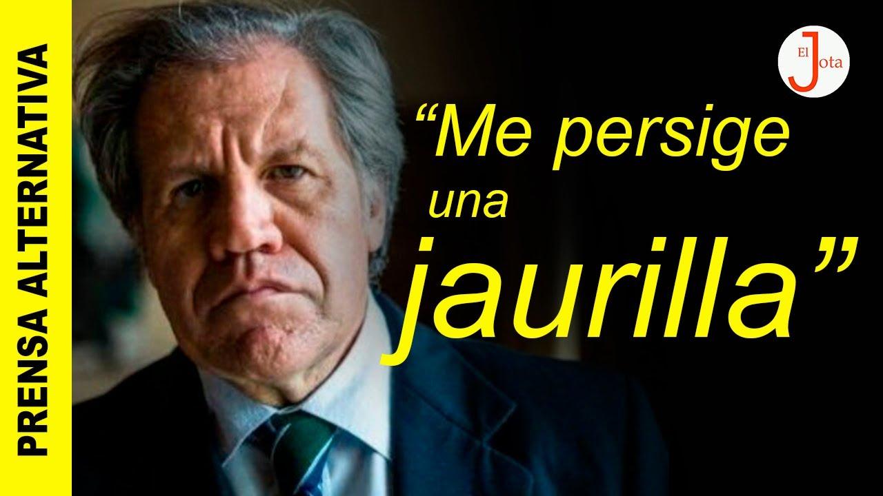 ¡Almagro pierde los papeles! Insulta a los demócratas de la Patria Grande y del Mundo