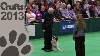 Obedience Dog Championships - Day 3 - Crufts 2013 (herbie Watson & Croftmist Sam The Man)