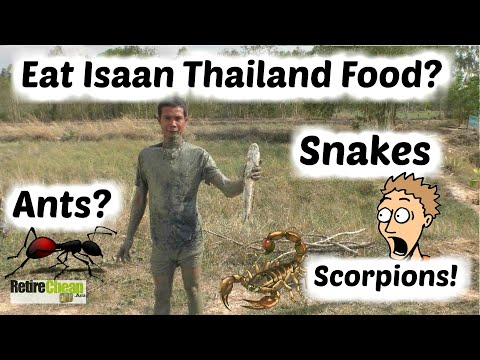 Isaan Food? - A Good Option for Expats - TIMyT 080