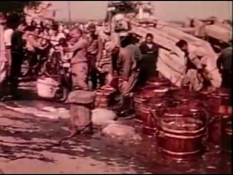 「多賀の山水」(昭和25年 茨城県製作)~懐かしのモノクロ映像(一部映像に乱れがあります)