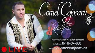 Cornel Cojocaru - Draga tata vreau sa ti spun - LIVE 2019 - fara dedicatii