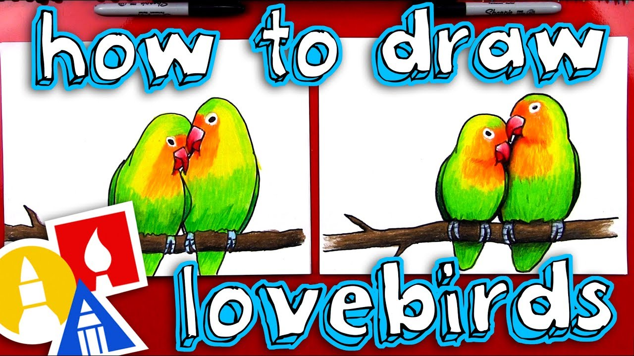 How To Draw Lovebirds Youtube
